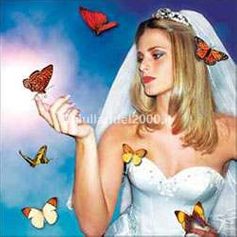Volo-Farfalle-locandina