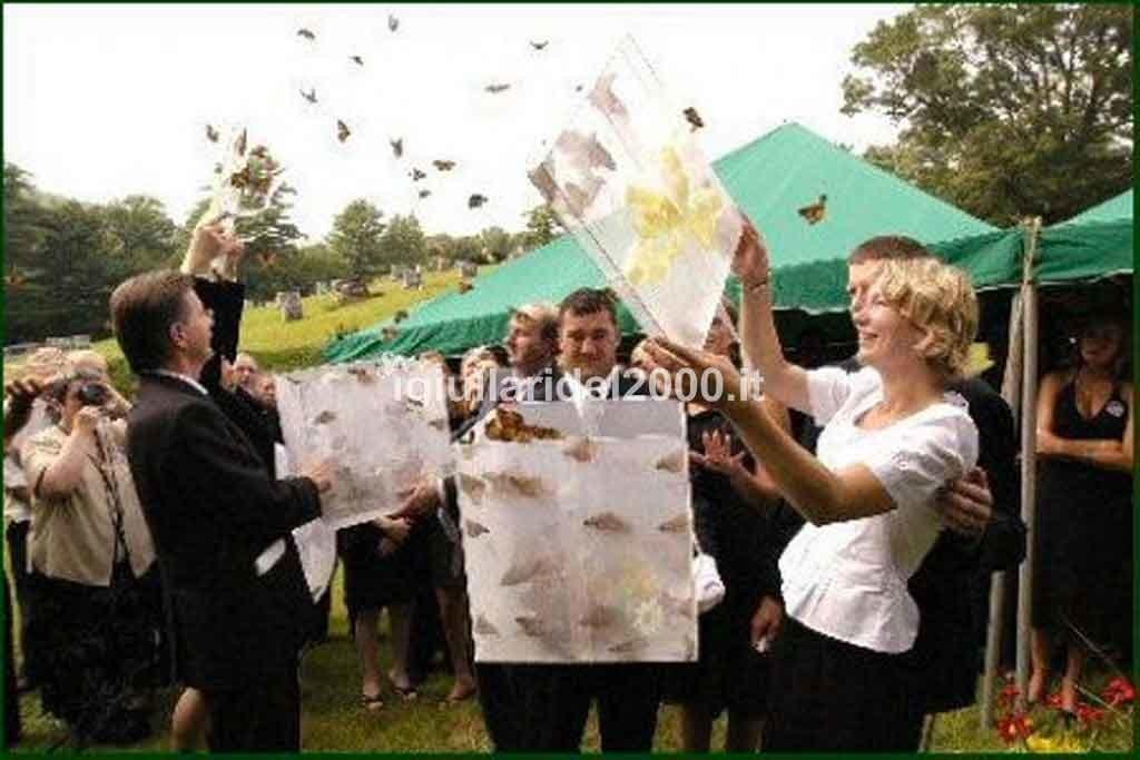 Volo-delle-Farfalle-per-Sposi1