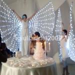 Show Farfalle Luminose al Taglio Torta Nuziale…Euro ......*